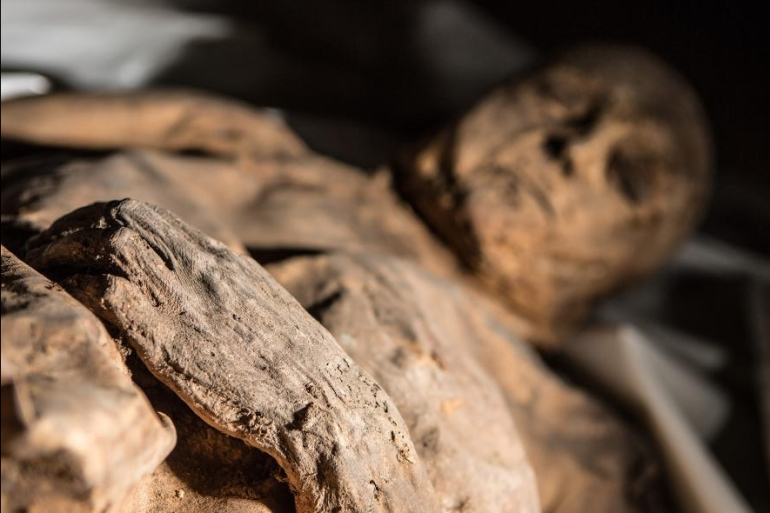 naturally mummified remains in Lithuanian crypt