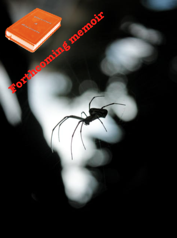 spider+VB Book